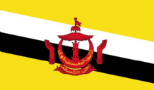 BRUNEI - HAND WAVING FLAG (MEDIUM)